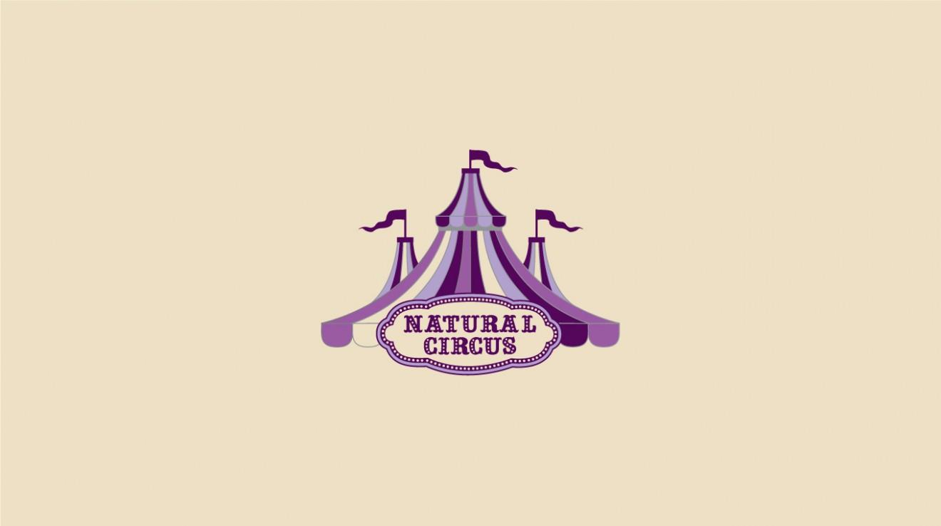 mijalschalit_circus_2